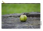 Apple Gourd Carry-all Pouch