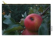 Apple Sunset Carry-all Pouch