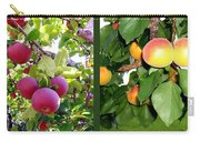 Apples And Apricots Carry-all Pouch by Will Borden