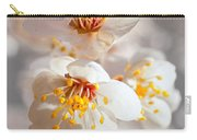 Apricot Blooms Carry-all Pouch