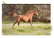 Arabian Horse Running Free Carry-all Pouch