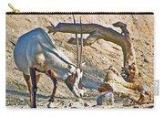 Arabian Oryx In Living Desert In Palm Desert-california Carry-all Pouch