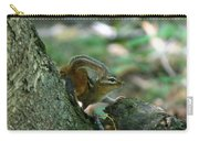 Arched Chipmunk Carry-all Pouch