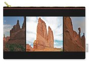 Arches National Park Panel Carry-all Pouch