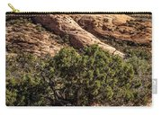 Arches Spires Carry-all Pouch