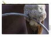 Archway Hummingbird  Carry-all Pouch