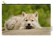 Arctic Wolf Pictures 1118 Carry-all Pouch