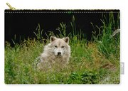Arctic Wolf Pictures 1172 Carry-all Pouch