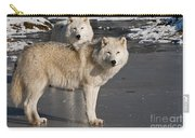 Arctic Wolf Pictures 812 Carry-all Pouch