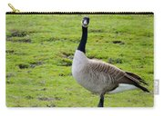 Are You Talking To Me Carry-all Pouch by Barbara Snyder