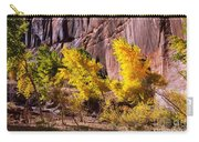 Arizona Autumn Colors Carry-all Pouch