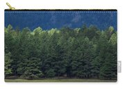Arizona Forest Carry-all Pouch