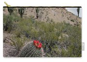 Arizona Icons Carry-all Pouch