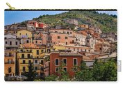 Arpino City Carry-all Pouch