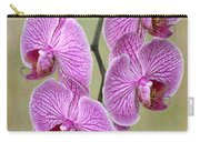 Artsy Phalaenopsis Orchids Carry-all Pouch