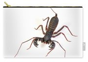 Asian Whipscorpion Carry-all Pouch