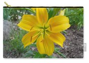 Asiatic Lily 2 Carry-all Pouch