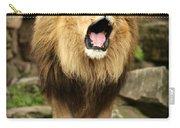 Aslan's Roar Carry-all Pouch