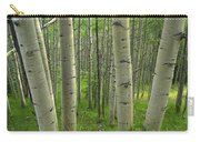 Aspen Forest In Spring Carry-all Pouch