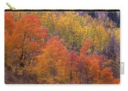 Aspen Grove In Fall Colors Carry-all Pouch