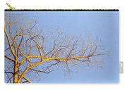 Aspen In The  Autumn Sun Carry-all Pouch by Elaine Booth-Kallweit