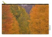 Aspen Road Carry-all Pouch