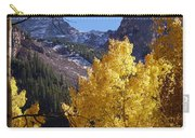 Aspen Viewing Carry-all Pouch