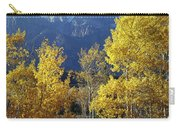 1m9356-v-aspens And The Grand Teton Carry-all Pouch