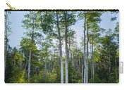 Aspens At Sunrise 1 - Santa Fe New Mexico Carry-all Pouch