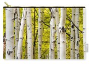 Aspens Carry-all Pouch by Chad Dutson