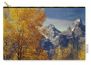 1m9353-aspens In Autumn And The Teton Range - V Carry-all Pouch