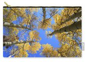 Aspens Skyward Carry-all Pouch by John Daly