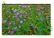 Asters On Heron Lake Trail In Grand Teton National Park-wyoming- Carry-all Pouch