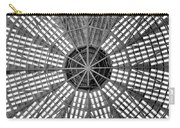 Astrodome Ceiling Carry-all Pouch