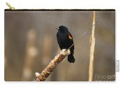At Rest Carry-all Pouch by Mike  Dawson