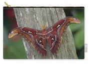 Atlas Moth Portrait Asia Carry-all Pouch