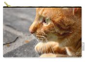 Attentive Carry-all Pouch