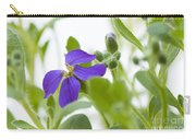 Aubretia Carry-all Pouch