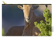 Auodad Ram On Watch Carry-all Pouch