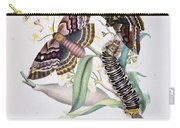 Australian Butterflies Carry-all Pouch by Philip Ralley