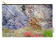 Autumn And Rocks Carry-all Pouch