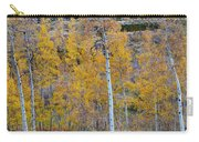 Autumn Aspens Carry-all Pouch by James BO  Insogna