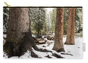 Autumn At Gore Creek 5 - Vail Colorado Carry-all Pouch by Brian Harig