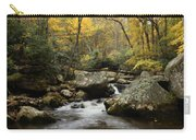Autumn At Stony Creek Carry-all Pouch