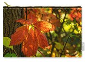 Autumn Begins 2 Carry-all Pouch