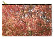 Autumn Blaze Carry-all Pouch by Kevin Croitz