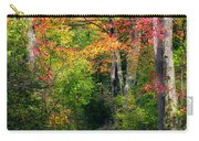 Autumn Boardwalk Carry-all Pouch by Bill Wakeley