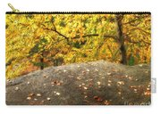 Autumn Boulder And Leaves Carry-all Pouch