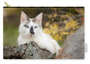 Autumn Cat Carry-all Pouch