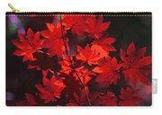 Autumn Colors Early Carry-all Pouch